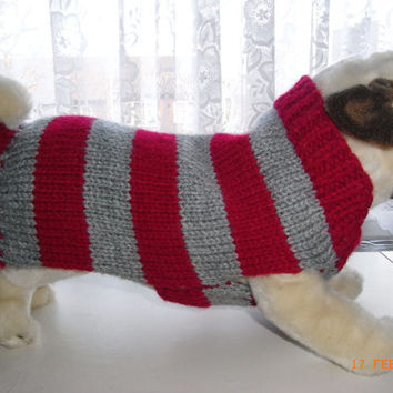 "Hand knit pug dog sweater / coat 13"" dog sweater, pug dog clothing, dog clothing, dog coat, pug clothes, pug sweater, pug dog coat"