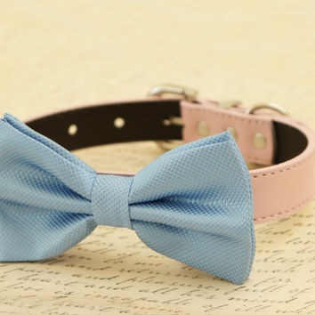 Blue dog bow tie attached to collar, Pet wedding, dog birthday