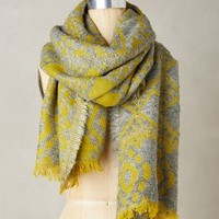 Liana Scarf by Anthropologie Green One Size Scarves