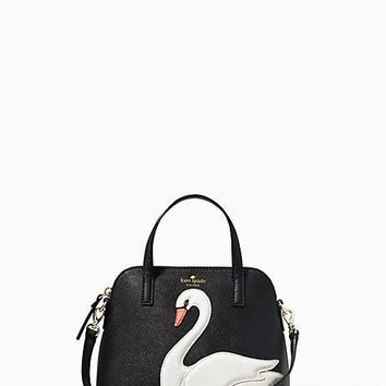 on pointe swan small maise