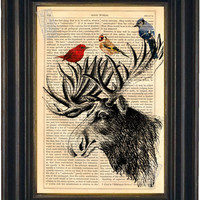 Moose head with colourful Birds Print on vintage upcycled page