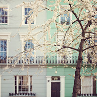 Blossoms in Notting Hill, London Photography, Mint Green, Home Decor, Wall Art, Print, Windows - I Love London in the Springtime