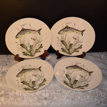 Christmasinjuly Johnson Brothers Fish Salad Plates 4 Vintage Fish English China Plates Set of 4 Hand Engraving Glazed Salad Lunch Plate Set