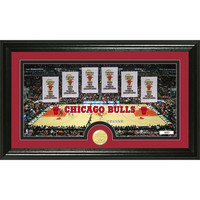 Chicago Bulls Traditions Bronze Coin Panoramic Photo Mint