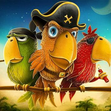5D Diamond Painting Pirate Parrots Kit
