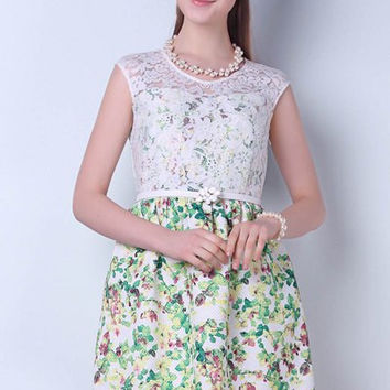 Round Collar Lace Floral Print High Waisted Mini Dress