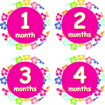 Baby Month Stickers Baby Monthly Stickers Girl Monthly Shirt Stickers Hibiscus Tropical Flower Pink Shower Gift Photo Prop Baby Milestone