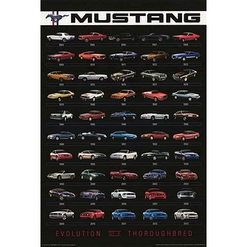 Ford Mustang Evolution 1964-2013 Poster 24x36