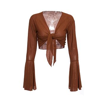 Crying My Eyes Out Brown Long Bell Sleeve V Neck Bow Knot Crop Top