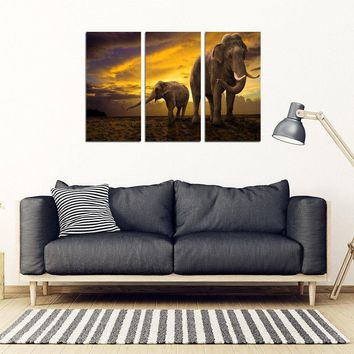 Mother Nature Elephant 3 Piece Framed Canvas Art