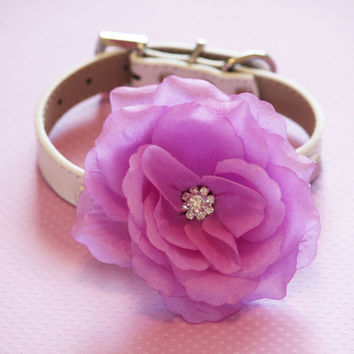 Purple Flora wedding Dog Collar, High Quality leather Collar,  Wedding dog accessory, Spring Wedding,  Xlarge dog collar
