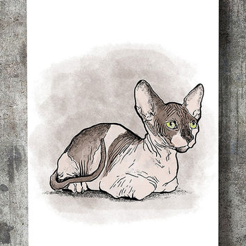 Sphynx print, cat drawing, ink painting, printable art,wall art printable,watercolor cat print,cat wall art,watercolor wall art,illustration