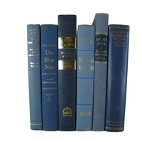 Blue Decorative Books by Color for Bookshelf Decor, S/6