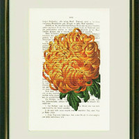 CHRYSANTHEMUM -  Dictionary art -Vintage art book page print recycled-  Antique Book Page upcycled - Art Print Dictionary