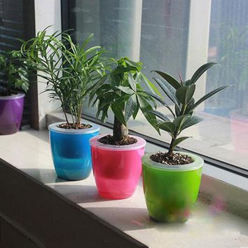 Pure Color Transparent Self Watering Planter Flower Pot Double Layers Plant Flower Planter Pot Home Garden Desk Decor