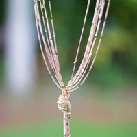 Knot Today Necklace