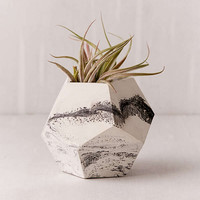Concrete Geometric X UO Dodecahedron Marble Planter | Urban Outfitters