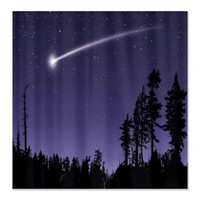 shooting star Shower Curtain on CafePress.com