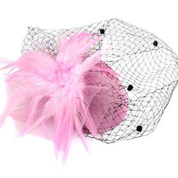 Ahugehome Fascinator Hair Clip Headband Pillbox Hat Flower Wedding Cocktail Tea Party