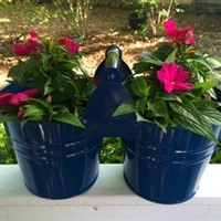 Colorful Dual Bucket with Handle (available in 2 colors)