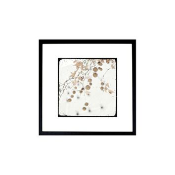 Winter photography, Nature photography, Floral wall decor, Floral Wall Art, Winter Art, Winter decor, White decor, Minimal art, 6x6(15x15cm)