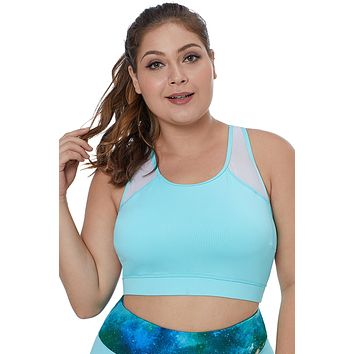 Light Blue Sheer Mesh Back Plus Size Sports Bra
