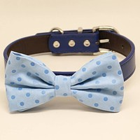 Blue Dog Bow Tie collar, Pet Beach Wedding, Polka Dots, Birthday, Something Blue
