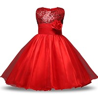 Aini Babe Princess Girl Sleeveless Sequins Floral Ball Gown Party Dress One Piece Daily Dress For Girl 4 5 6 8 10 12Yrs Birthday