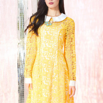 Collar ID Dress in Yellow