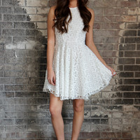 Positively Lace Flare Dress