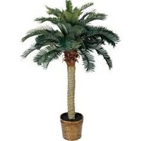 Nearly Natural 4' Sago Palm Tree 5043