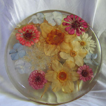 Large Trivet Hot Plate Dried Flowers in Resin Lucite 1960s Kitchen Kitch Decor Mid Century Collectible