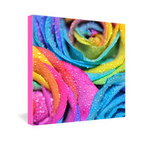 Lisa Argyropoulos Rainbow Swirl Gallery Wrapped Canvas