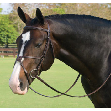 Showmark Deluxe Jumper Bridle | Dover Saddlery