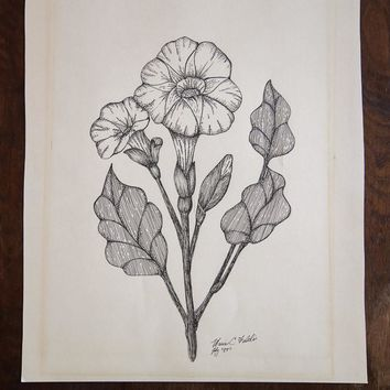Blossomed Plant in Ink
