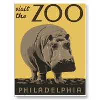 Visit The Zoo ~ Philadelphia ~ Hippo Post Cards