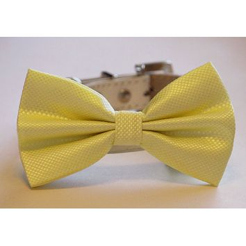 Lemon Wedding Dog Bow Tie, Pet Wedding, Lemon Wedding