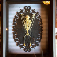 Ornate Framed Bat Skeleton