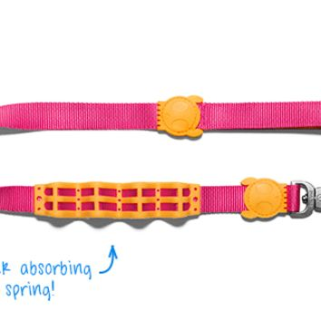 Birdie | Shock Absorbent Dog Leash