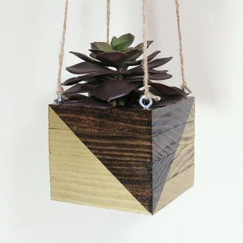 Hanging Planter, Succulent Planter, Wood Planter, Indoor Planter, Modern Planter, Air Plant Holder, Geometric Planter, Succulent Pot, Gold