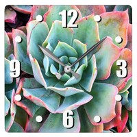 Chic, stylish, mint green cactus close-up photo square wall clock