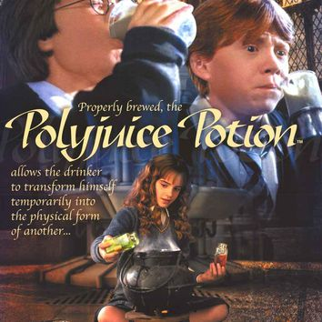 Harry Potter Polyjuice Potion Poster 24x34