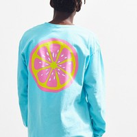 Grapefruit Long Sleeve Tee | Urban Outfitters