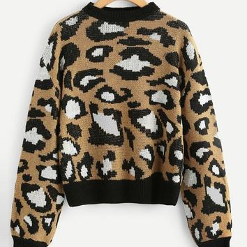 Preppy Leopard Print Sweater