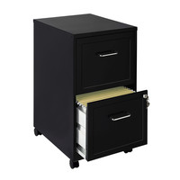 Black 2-Drawer Locking Vertical Mobile Filing File Cabinet with Casters