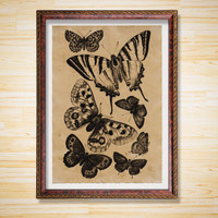 Butterflies print Antique decor Animal poster