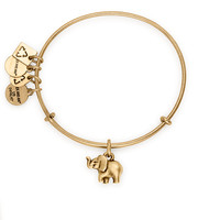 Elephant Charm Bangle | Friends of Jaclyn Foundation