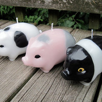 PIG Novelty Candle by kittredgecandles on Etsy