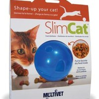 Slimcat Interactive Feeder