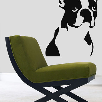 Wall Decals Vinyl Decal Sticker Mural Pet Shop Decor Dog Boston Terrier Kj831